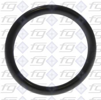 O-Ring/Silicon