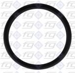 O-Ring 6225